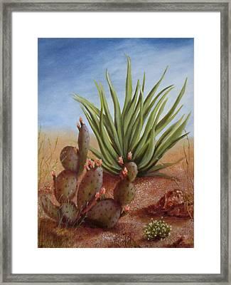 Spring In The Desert Framed Print by Roseann Gilmore