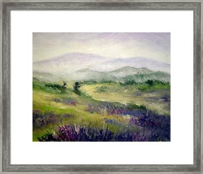 Mountain Spring Iv Framed Print