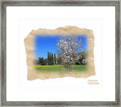 Spring In The Paper Framed Print