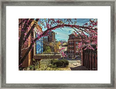 Spring In The Scenic City Framed Print