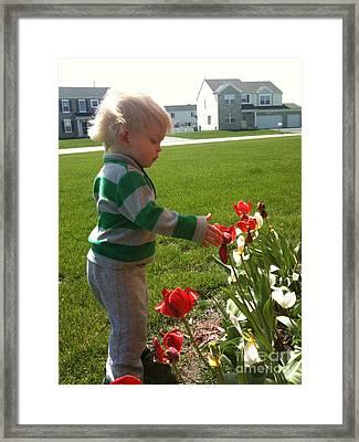 Spring Innocence Framed Print