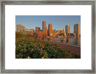 Spring Into Downtown Boston Framed Print