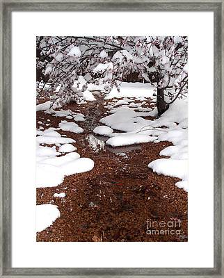 Framed Print featuring the photograph Spring Into Winter by Kerri Mortenson