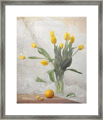 Spring Framed Print by Irina No
