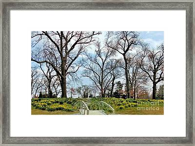 Spring Is Coming Framed Print by Janette Boyd