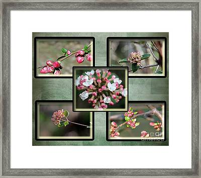 Spring Is Here - Green Framed Print