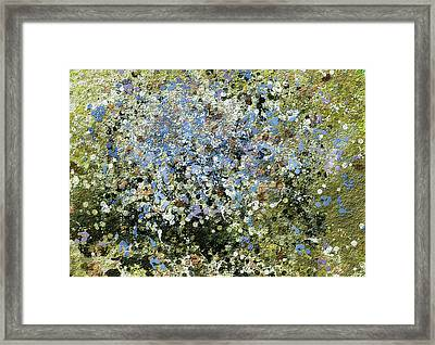 Spring Is Here - Abstract Framed Print