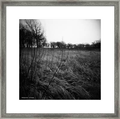 Spring Is Near Holga Photography Framed Print