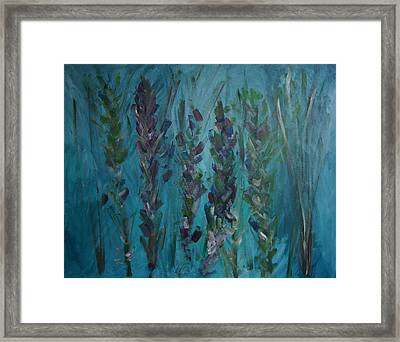 Turqouise Spring Framed Print by Jessie Nolan