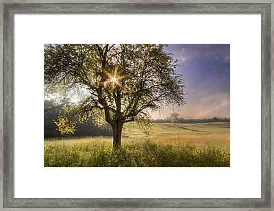 Spring Jewel Framed Print by Debra and Dave Vanderlaan