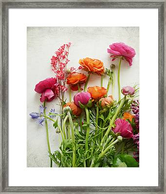 Spring Joy Framed Print by Lupen  Grainne