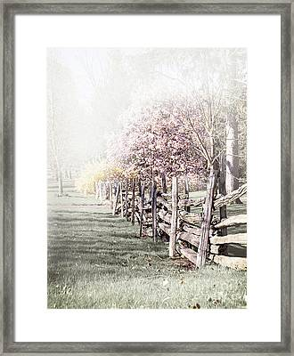 Spring Landscape With Fence Framed Print