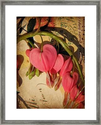 Spring Love Framed Print by Chris Berry