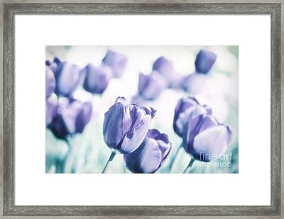Spring Love II Framed Print by Angela Doelling AD DESIGN Photo and PhotoArt