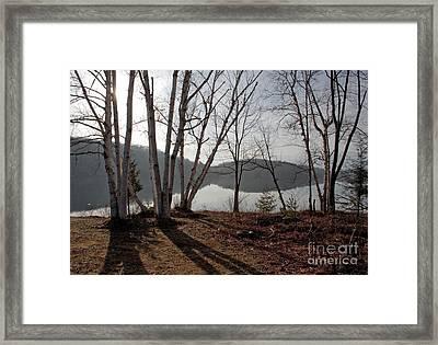 Spring Mist Framed Print