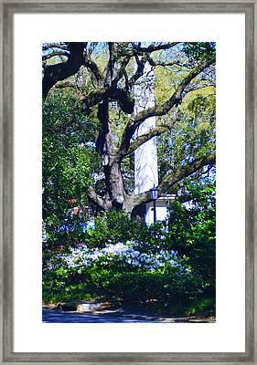 Spring Monolith Framed Print
