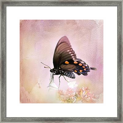 Spring Morning Framed Print by Betty LaRue
