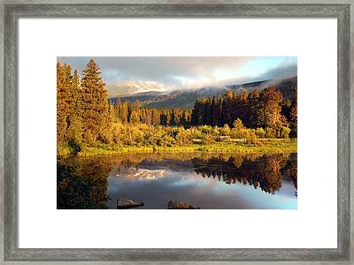Framed Print featuring the photograph Spring Morning by Gregory Ballos