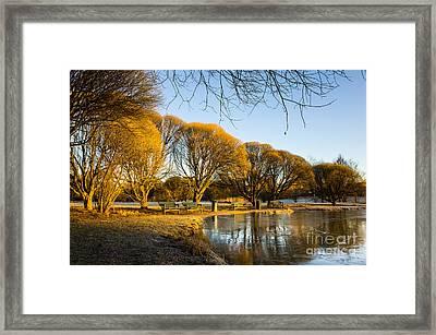 Spring Morning In The Park Framed Print