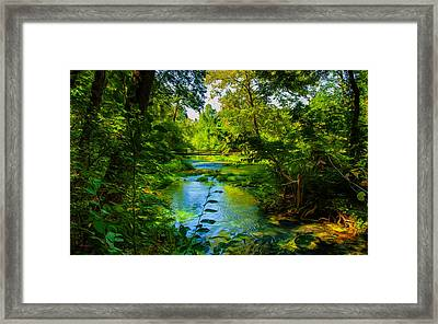Spring Of Wonderment Framed Print by John M Bailey