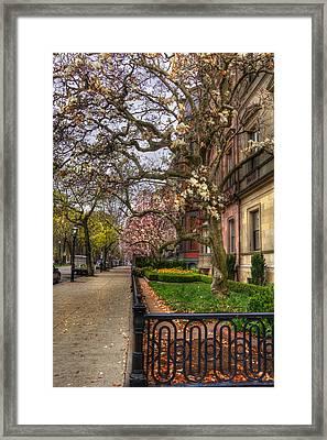 Spring On Commonwealth Avenue - Boston Framed Print by Joann Vitali
