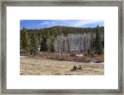 Spring On The Back Roads Framed Print by Paul W Sharpe Aka Wizard of Wonders