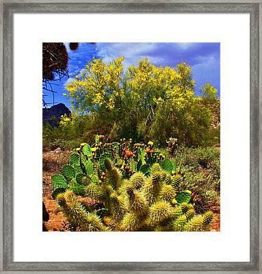 Spring On The Desert Framed Print