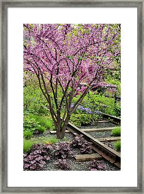 Spring On The High Line Framed Print