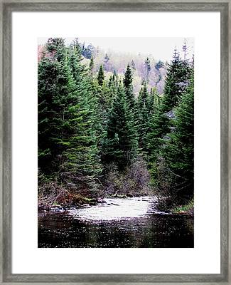 Spring On The Stream Framed Print by Will Boutin Photos