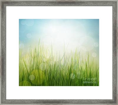 Spring Or Summer Abstract Season Nature Background  Framed Print by Mythja  Photography