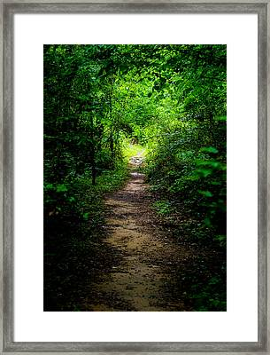 Spring Path To The Light Framed Print by Shelby  Young