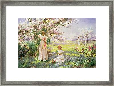 Spring   Picking Flowers Framed Print by Alfred Augustus I Glendenning