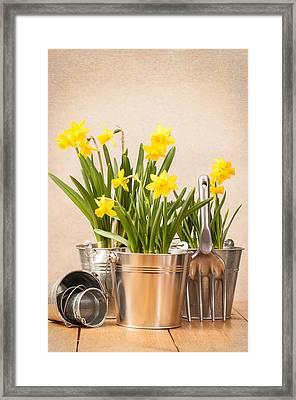 Spring Planting Framed Print by Amanda Elwell