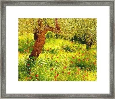 Spring Poppies Impressionism Framed Print
