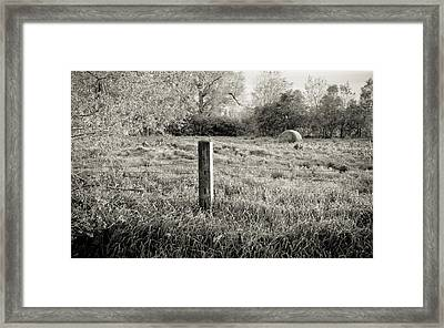 Spring Post And Bale In Black N White Framed Print by Tracy Salava