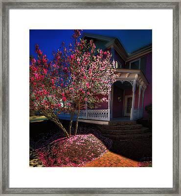 Spring R Sprung 3 Framed Print