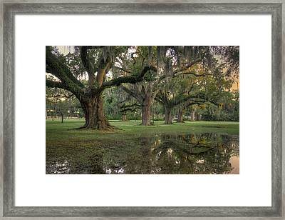 Spring Rain In New Orleans Framed Print
