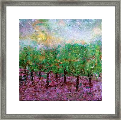 Spring Rain Framed Print by Jim Whalen