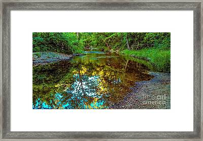 Spring Reflection  Framed Print by Peggy Franz