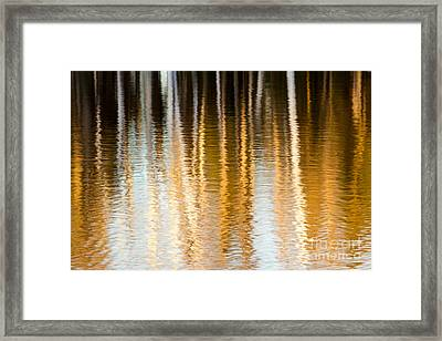 Spring Reflections Framed Print