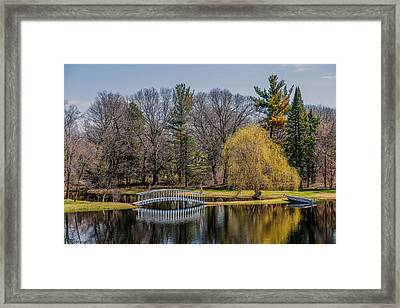 Spring Reflections Framed Print by Paul Freidlund