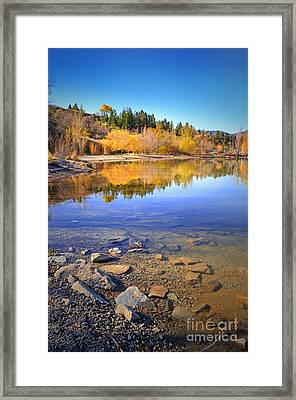 Spring Reflections Framed Print by Tara Turner