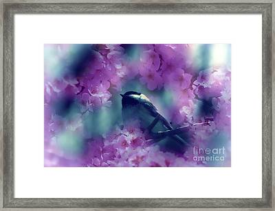 Spring Rhapsody Blossoms Framed Print by Cathy  Beharriell
