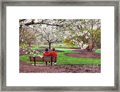 Spring Romance Framed Print by Dan Carmichael