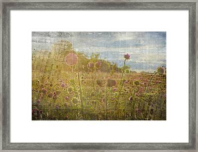 Spring Romance Framed Print by Toni Hopper