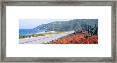 Spring, Route 1, California Coast Framed Print by Panoramic Images