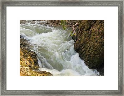 Spring Rush Framed Print by Julie Andel