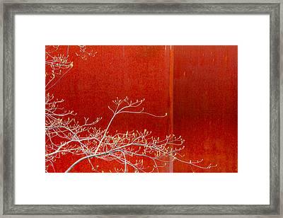 Spring Rust Framed Print by Takeshi Okada