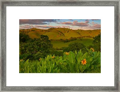Spring Scene At Round Valley Framed Print
