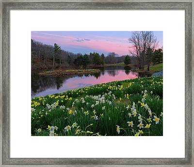 Spring Serenity Framed Print by Bill Wakeley